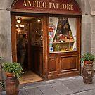ANTICO FATTORE!!!! by imagic