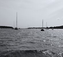 Cotuit Bay View By Jonathan Green by Jonathan  Green