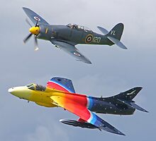 """Miss Demeanour"" Hunter - Sea Fury T20 by Colin J Williams Photography"