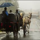 Horses & Carriage by John Van-Den-Broeke