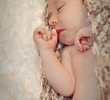 Slumber, Peacefully sleeping the baby ... by Renee  Lowe