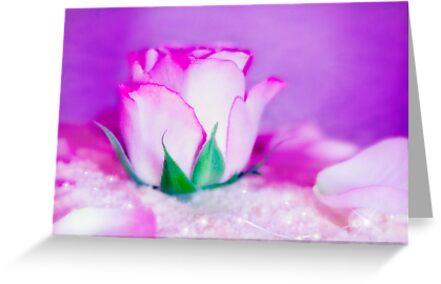 Fleur VII by Damienne Bingham