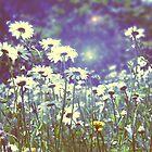 Flowers in Hyde Park by Jadetang