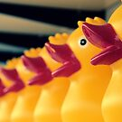 Ducks In A Row by James  Birkbeck