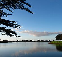 Aquatic Park, Berkeley, dusk by luvdusty