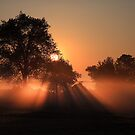 Misty sunrise Rockwood Ontario Canada by Eros Fiacconi (Sooboy)