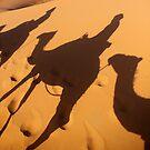 sahara shadows by Iris Mackenzie