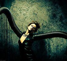 Black Widow Suite by David Weber