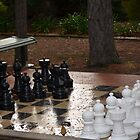 Anyone for Chess by anneisabella