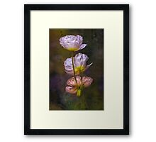 Poppies on Parade Framed Print