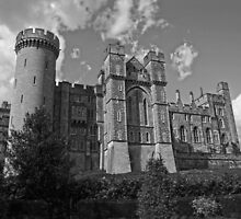 Arundel Castle by James Taylor
