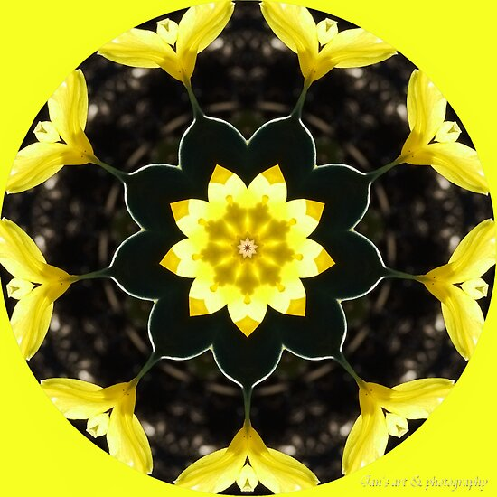 Springtime Kaleidoscope by Jan  Tribe