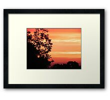 Nature's Paint Brush © Framed Print