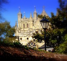 A glimpse of Exeter Cathedral by Charmiene Maxwell-batten