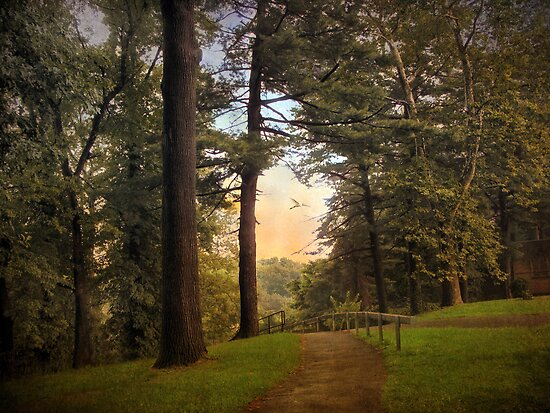 Path at Dusk by Jessica Jenney