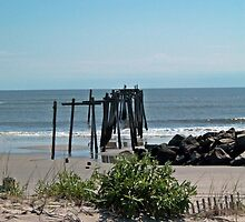 "Pier From the Dune by Scott ""Bubba"" Brookshire"