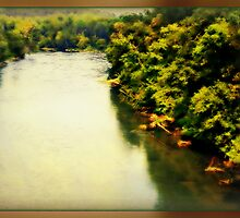 The Chattahoochee River - Marietta, Ga by Scott Mitchell