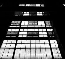 Fenestration by James  Booth