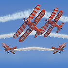 10 Ship Wingwalkers ! by Colin J Williams Photography