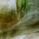Pure abstraction in Fornant river by Patrick Morand