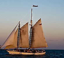 Sloop Sailing Windward by Moray
