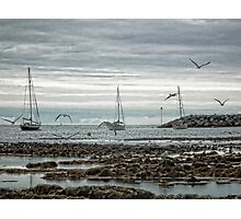 Grey Day At Lyme Photographic Print