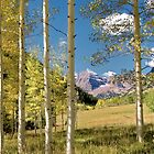 Maroon Bells from a distance by Wojciech Dabrowski