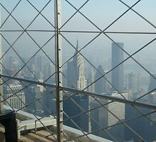 View of Manhattan, New York from the Empire State Building by Sarah Louise English