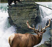 Encounter at the Falls by Skye Ryan-Evans