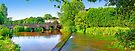 Tilford - The River Wey by Colin J Williams Photography