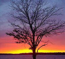 Sunset- Lake Charlevoix, Boyne City, Michigan by Melissa Delaney
