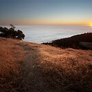 Mount Tamalpais Sunset by Bryan Jolly