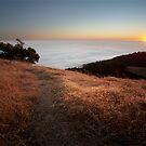 Mount Tamalpais Sunset by Bryan Jolly