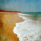 Arid Dreams by Sue Wickham