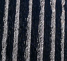 Weathered radiator by the57man