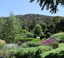 Tieve Tara Gardens by Melanie  Barker