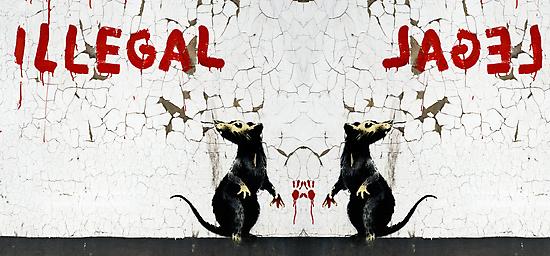 Fitzrovia Rat mirror image by Respire