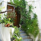 Plants by the Front Door by ienemien