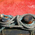 Tied up in Knots by buttonpresser