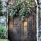 Garden Door - Yengo - Mt Wilson NSW Australia by Bev Woodman