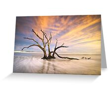 The Calm - Folly Beach at Sunset - Charleston, SC, USA Greeting Card
