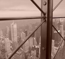 Empire State Building Panoramic View, New York, America by Sarah Louise English