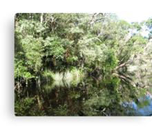 Noosa River Everglades - Reflections 5 Canvas Print