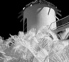 The Tower - Surfers Paradise by Hans Kawitzki