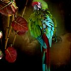 Coy Macaw by enchantedImages