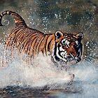 Tiger Splash by PAUL57