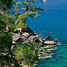 Summer days.....Lake Tahoe Style by Helen Vercoe