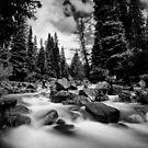 Colorado Stream by Steve Leath