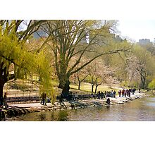 Traces of Spring, Central Park - New York City Photographic Print