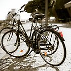 Bicycle love affair by Mario Brandao